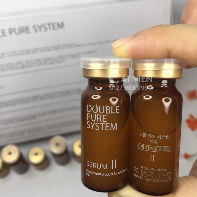 DOUBLE PURE SYSTEM (4)